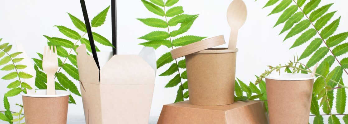 Eco-Friendly Disposable Tableware